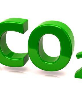 ¿Cómo saturar el invernadero del gas carbónico?