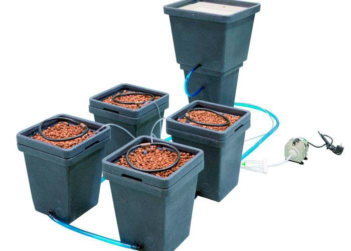 Sistema simple y barato de la inundación periódica para el cultivo de marihuana