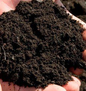 Saturamos el suelo con nitrógeno. Añadiduras nocivas a evitar