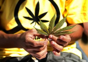 ¿Provoca la marihuana el consumo de drogas graves?
